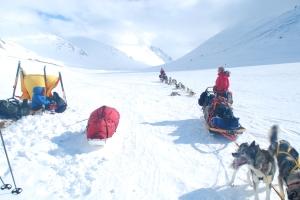 Hundekjørere Matti og Stina. Hundene fra Ingen Grenser