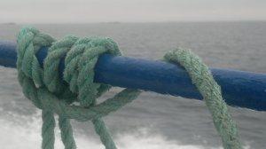 Grip. Foto Mari Kolbjørnsrud (3)