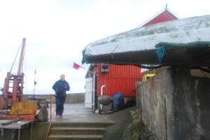 Store Torungen. Foto Mari Kolbjørnsrud (7)